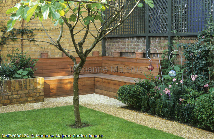 Fig tree in lawn, built-in wooden bench with hidden storage against courtyard wall, lanterns