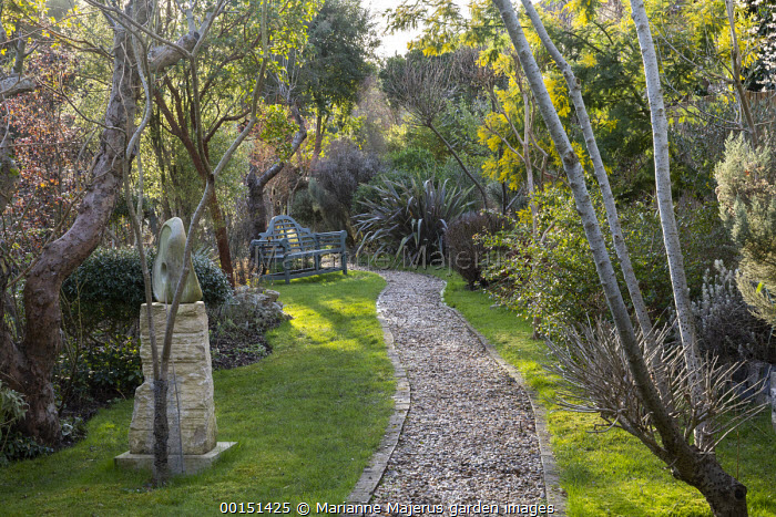 Gravel path, bench on lawn, Phormium 'Pink Stripe', Acacia dealbata, sculpture on stone plinth