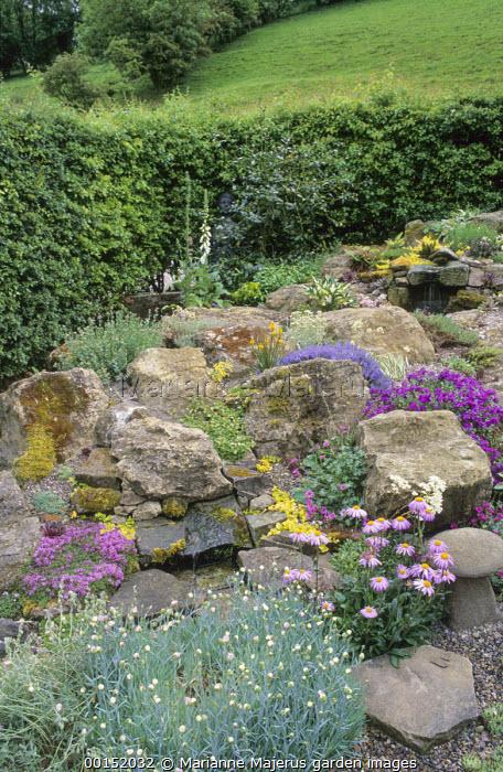 Alpine rock garden with dianthus and aubrietia
