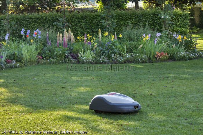 Robotic lawnmower, electric lawn mower