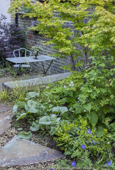 Brunnera macrophylla 'Jack Frost', Acer palmatum 'Osakazuki', Geranium 'Johnson's Blue', Milium effusum, table and chair on patio in shady corner, Acer palmatum 'Bloodgood'