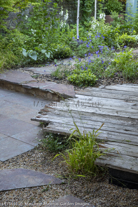 Reclaimed timber decking, Brunnera macrophylla 'Jack Frost', Geranium 'Johnson's Blue', stepping stone path, , stone patio, Digitalis purpurea 'Jack Frost'
