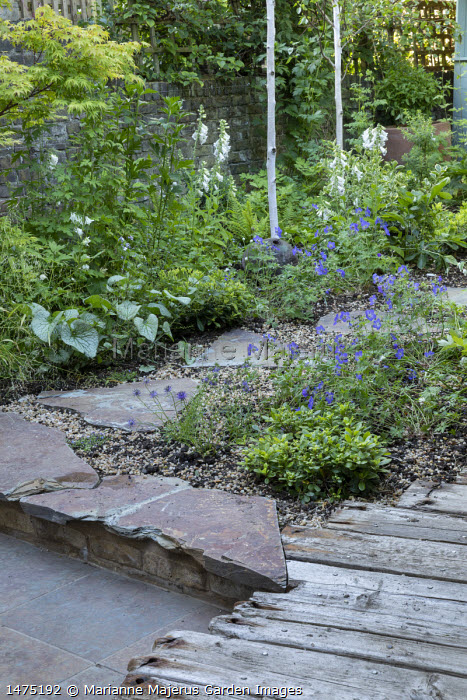 Charred wooden bench, Milium effusum, Brunnera macrophylla 'Jack Frost', Geranium 'Johnson's Blue', stepping stone path, reclaimed timber decking, stone patio, Digitalis purpurea 'Pam's Choice'