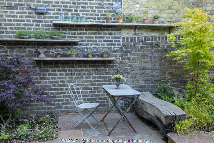Table and chairs on stone patio, charred wooden bench, display of pots on shelves on brick wall, Acer palmatum 'Osakazuki', Milium effusum, Acer palmatum 'Bloodgood'