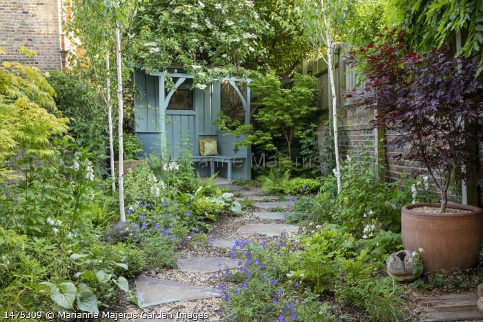 Stepping stone path through shady garden leading to blue painted arbour, Betula utilis var. jacquemontii, Geranium 'Johnson's Blue', Acer palmatum 'Bloodgood' in pot, Digitalis purpurea 'Pam's Choice'