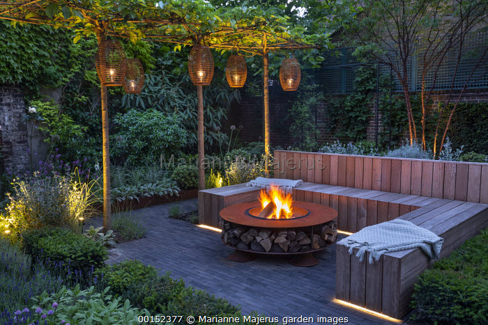 Lanterns hanging from row of umbrella-trained Morus nigra 'Fruitless' by built-in wooden seating area around Cor-Ten steel firepit, low Taxus baccata hedge, herb border with chives, Lavandula angustifolia 'Hidcote Blue', Prunus serrula