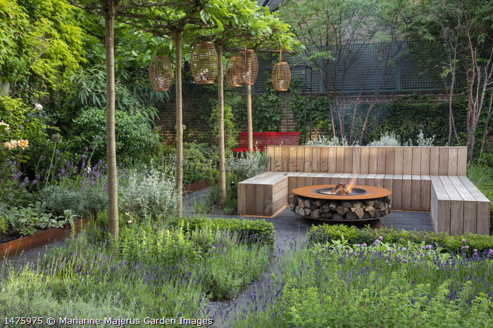 Lanterns hanging from row of umbrella-trained Morus nigra 'Fruitless' by built-in wooden seating area around Cor-Ten steel firepit with log storage, low Taxus baccata hedge, herb border with Lavandula angustifolia 'Hidcote Blue', Rosmarinus officinalis 'Miss Jessopp's Upright', Teucrium fruticans, Prunus serrula