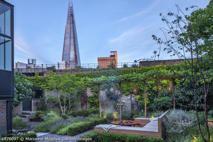 Lanterns hanging from row of umbrella-trained Morus nigra 'Fruitless' by built-in wooden seating area around Cor-Ten steel firepit, low Taxus baccata hedge, herb border with chives, Lavandula angustifolia 'Hidcote Blue', view towards The Shard