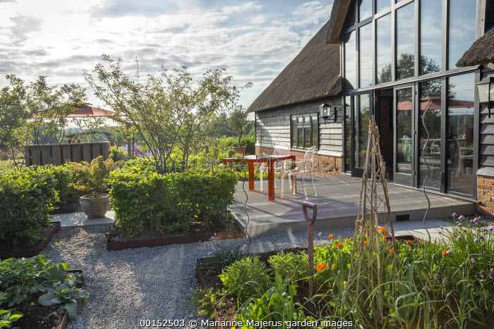 Transparent table and chairs on decking by thatched house, multi-stemmed Amelanchier lamarckii in clipped cubes of Carpinus betulus in Cor-Ten steel edged beds, kitchen garden