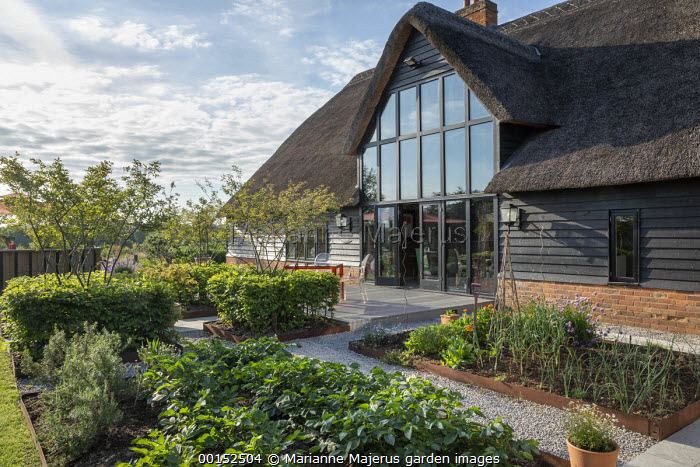 Transparent table and chairs on decking by thatched house, kitchen garden edged with Cor-Ten steel, multi-stemmed Amelanchier lamarckii in clipped cubes of Carpinus betulus