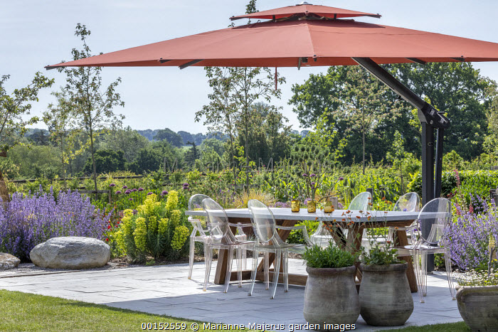 Transparent chairs around table on stone patio under orange umbrella, Euphorbia characias subsp. wulfenii, Nepeta racemosa 'Walker's Low', geum in containers