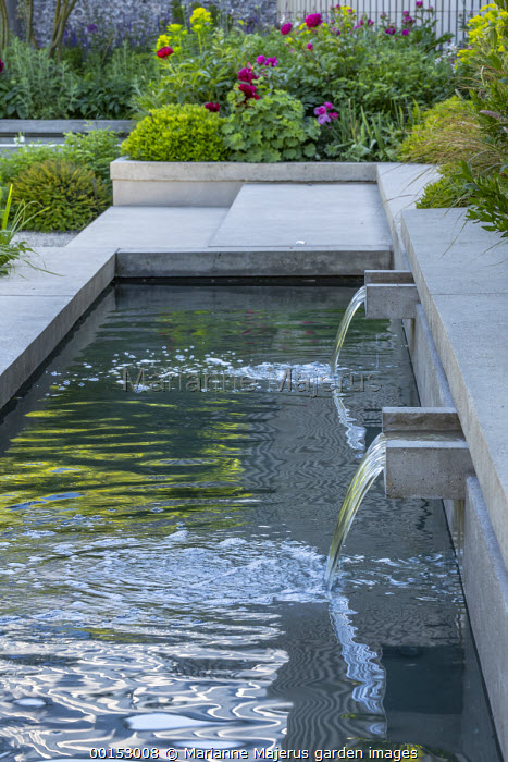 Concrete water shutes in formal pool, concrete steps, Alchemilla mollis, Paeonia 'Karl Rosenfield'