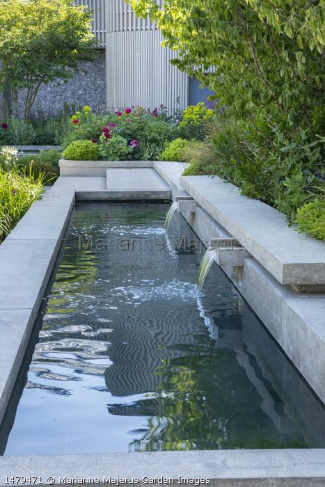 Concrete water shutes in formal pool, concrete steps, Alchemilla mollis, Paeonia 'Karl Rosenfield', multi-stemmed Amelanchier lamarckii, Cornus mas