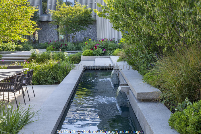 Concrete water shutes in formal pool, concrete steps, table and chairs on concrete terrace, Paeonia 'Karl Rosenfield', multi-stemmed Amelanchier lamarckii, Cornus mas