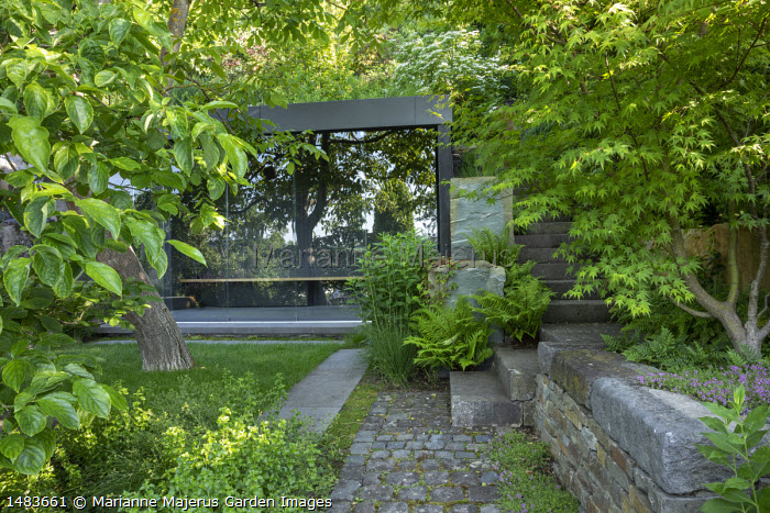 Contemporary pavilion, Acer palmatum in stone raised bed, stone steps, Dryopteris affinis, Thymus 'Bressingham' in paving cracks