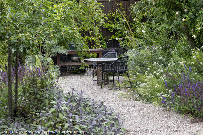 Chairs and table on gravel terrace, Salvia officinalis 'Purpurascens', Centranthus ruber 'Albus'