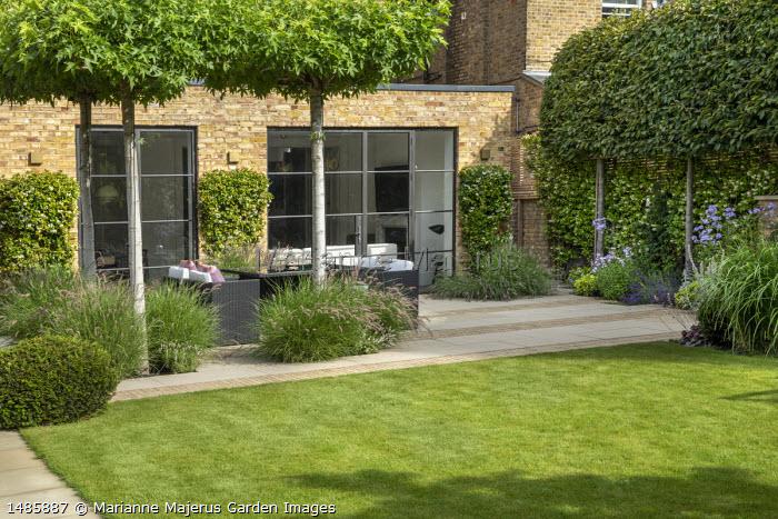 View across lawn to Rattan furniture on stone and brick patio under umbrella-trained Liquidambar styraciflua, Pennisetum orientale 'Karley Rose', pleached hornbeam hedge