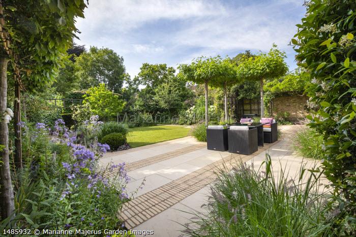 Rattan furniture with cushions on stone patio under umbrella trained Liquidambar styraciflua, Pennisetum orientale 'Karley Rose'