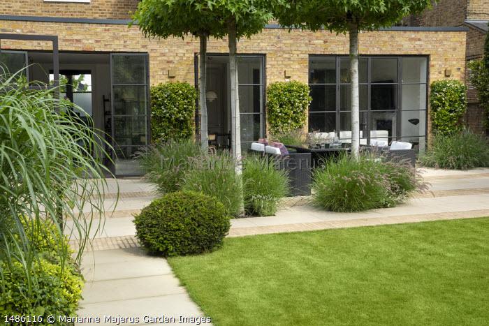 View across lawn to Rattan furniture on stone and brick patio under umbrella-trained Liquidambar styraciflua, Pennisetum orientale 'Karley Rose'
