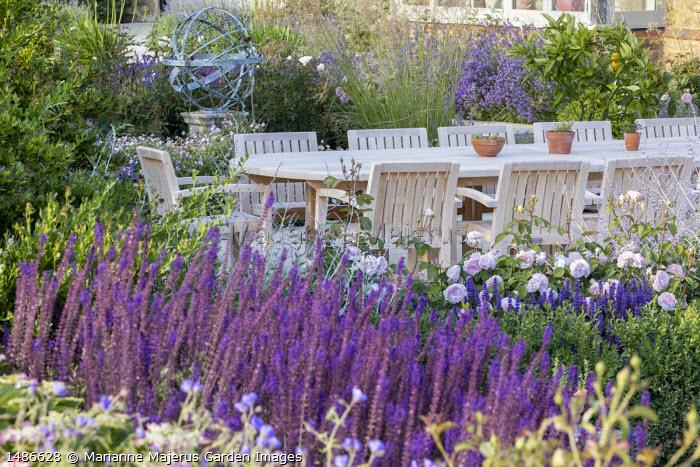 Wooden table and chairs on stone patio, Rosa 'Olivia Rose Austin', Perovskia 'Blue Spire', Salvia nemorosa 'Caradonna'