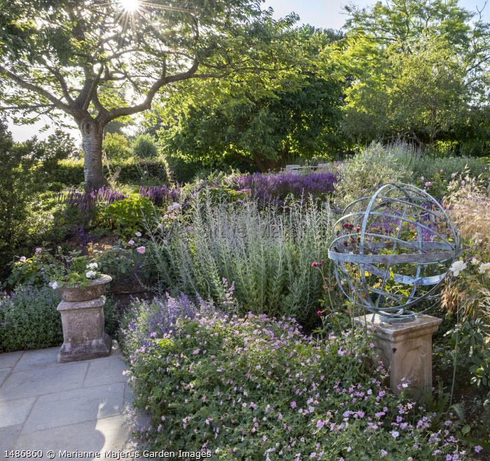 Armillary sphere in border, Perovskia 'Blue Spire', Geranium 'Dreamland', Salvia nemorosa 'Caradonna', Rosa 'Olivia Rose Austin', Nepeta racemosa 'Walker's Low'