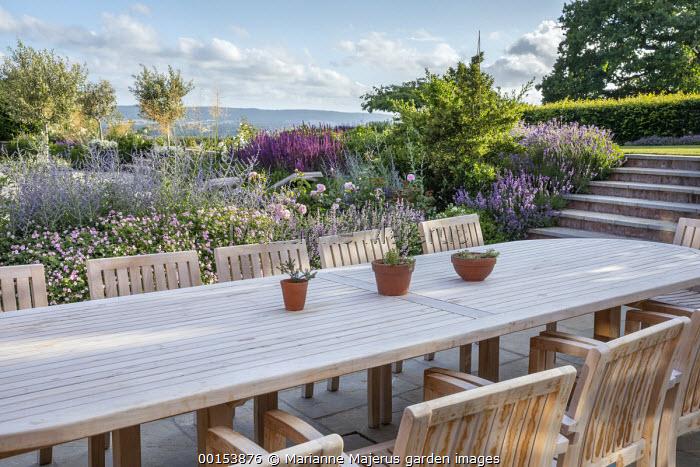 Wooden table and chairs on stone patio, Rosa 'Olivia Rose Austin', Perovskia 'Blue Spire', Salvia nemorosa 'Caradonna', Geranium 'Dreamland'