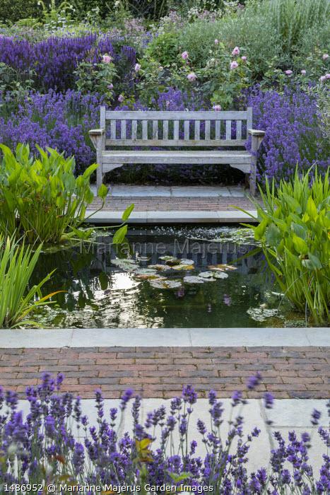 Wooden bench on stone and brick patio overlooking square formal pond, Rosa 'The Alnwick Rose', Lavandula angustifolia 'Munstead', Salvia nemorosa 'Caradonna'
