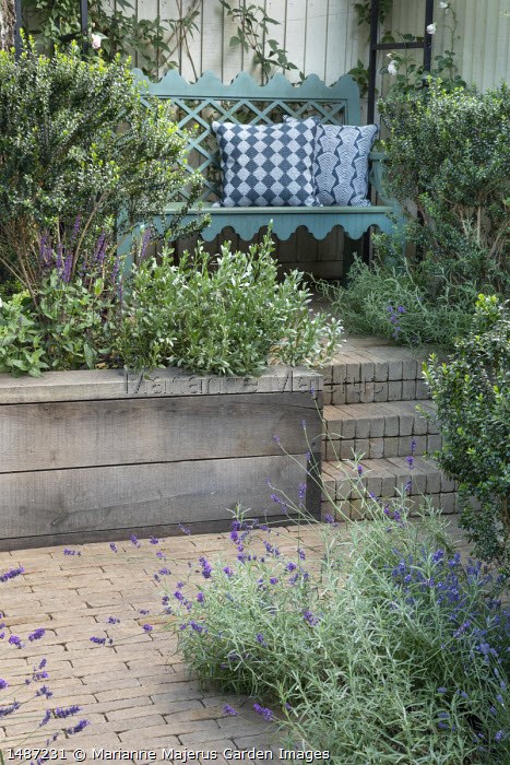 Wooden bench with cushions, lavender