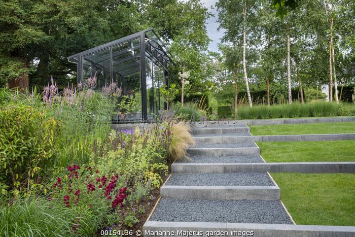 Stone-edged gravel steps, black-framed greenhouse, Stipa tenuissima, Veronicastrum virginicum 'Temptation', penstemon, Betula pendula