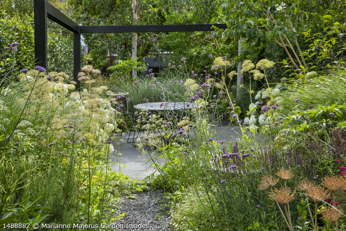 Black painted pergola, Hydrangea arborescens 'Annabelle', table and chairs on stone paving, Verbena bonariensis, Valeriana officinalis