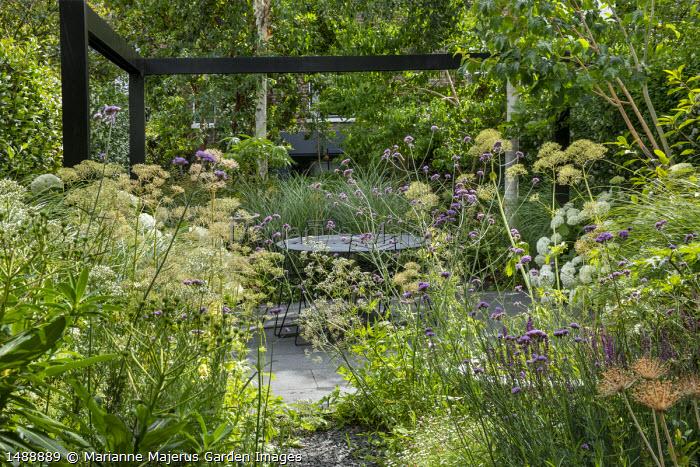 Black painted pergola, Hydrangea arborescens 'Annabelle', table and chairs on stone paving, Verbena bonariensis, Valeriana officinalis