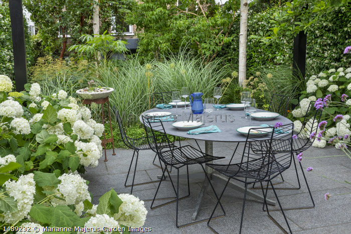Hydrangea arborescens 'Annabelle', table and chairs on stone paving, Verbena bonariensis, Miscanthus sinensis 'Sarabande'