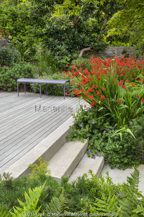 Purple metal bench on decking, crocosmia, Geranium 'Rozanne'