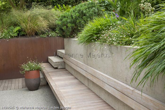 Built-in wooden bench, Erigeron karvinskianus, Hakonechloa macra, Pinus mugo var. mugo, Anemanthele lessoniana, cor-ten steel raised bed