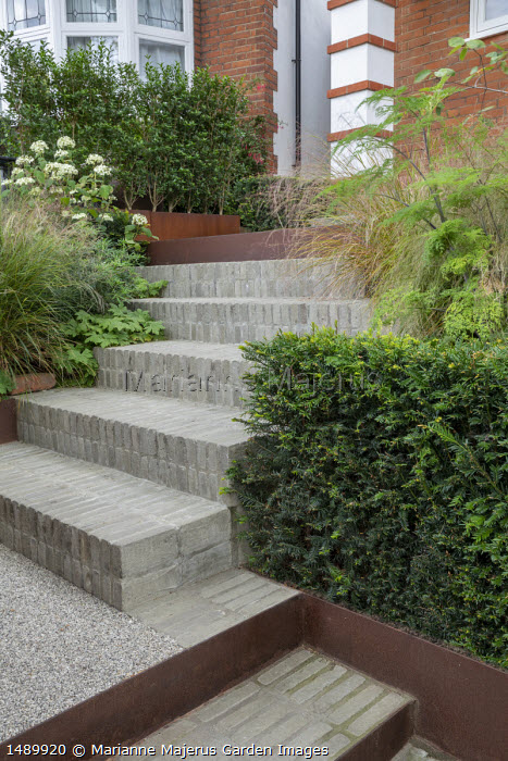 Brick steps with Cor-Ten steel risers, clipped yew hedges