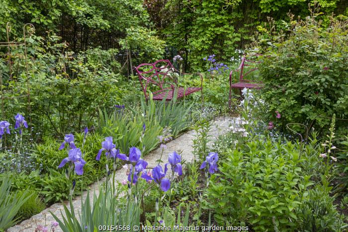 Granite sett path leading to red metal benches, irises