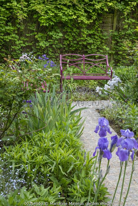 Granite sett path leading to red metal bench, irises