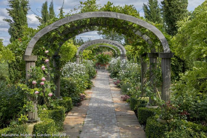 Roses and wisteria climbing over pergola archway, stone path, Anemone × hybrida 'Honorine Jobert'