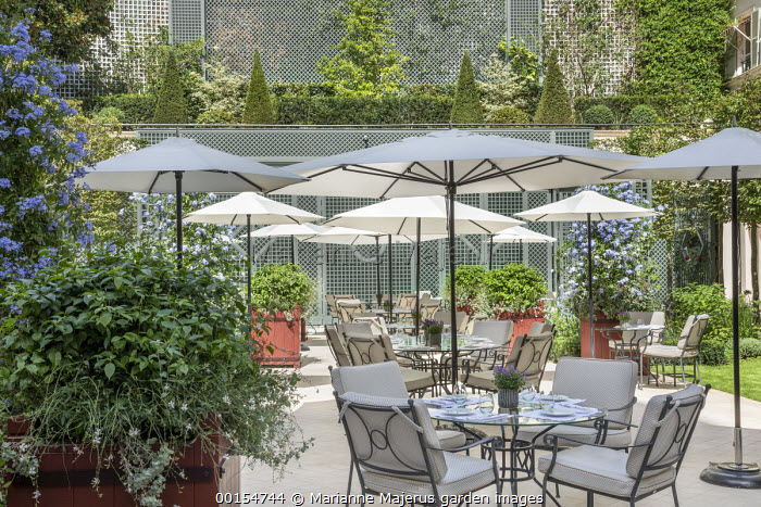 Tables and chairs on hotel terrace, Plumbago auriculata in square red painted containers