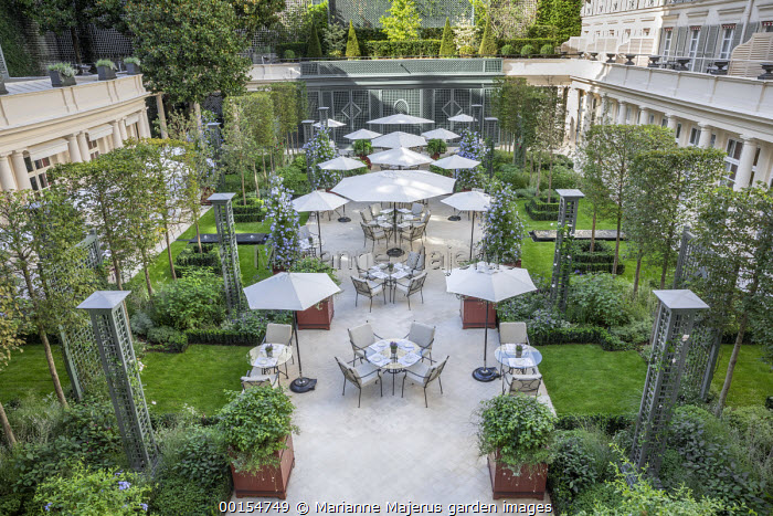 Tables and chairs on hotel terrace, Plumbago auriculata in square red painted containers, clematis climbing on obelisks, pleached Carpinus betulus screens