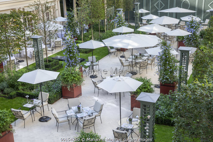 Tables and chairs on hotel terrace, Plumbago auriculata in square red painted containers, clematis climbing on obelisks