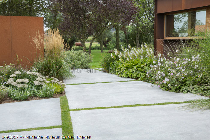 White garden, Anemone x hybrida 'Honorine Jobert', hosta, Cor-Ten steel clad house, polished concrete paving
