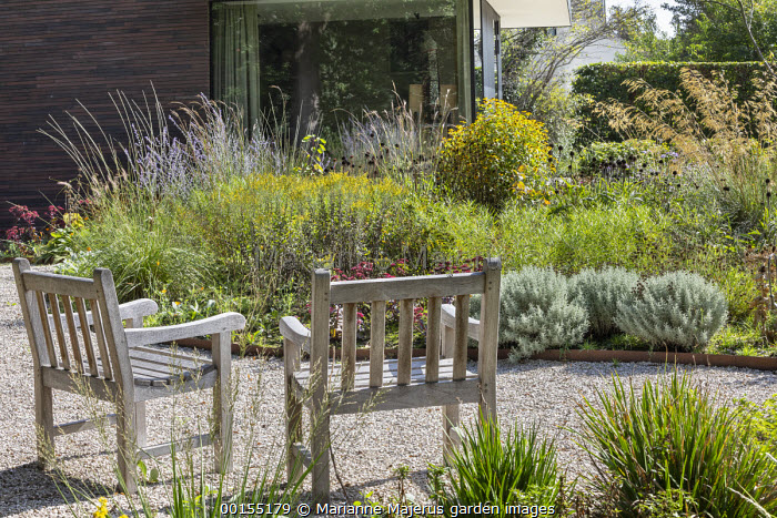 Wooden chairs on gravel terrace, Cor-Ten steel border edging, Rudbeckia triloba, Stipa gigantea
