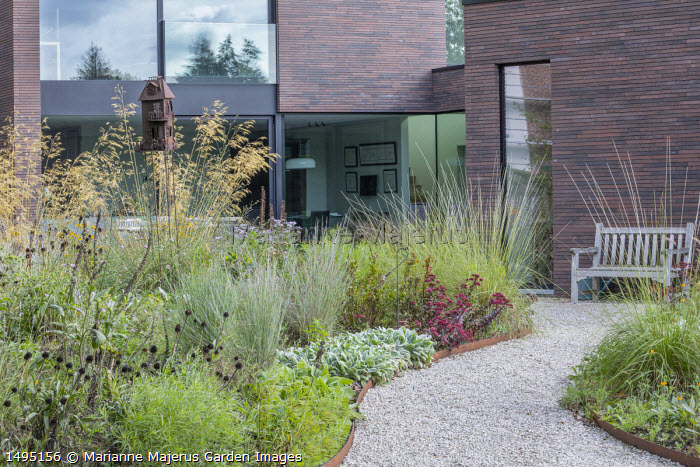 Stipa gigantea, sedum, Stachys byzantina, gravel path leading to wooden bench by contemporary house
