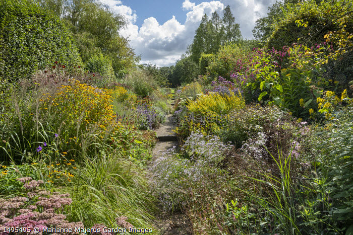 View along path through double borders, Sedum 'Matrona', Pennisetum massaicum 'Red Buttons', Aster pyrenaeus 'Lutetia', Solidago flexicaulis 'Variegata', Persicaria orientalis, Rudbeckia triloba, Dahlia 'Mexican Black', asters