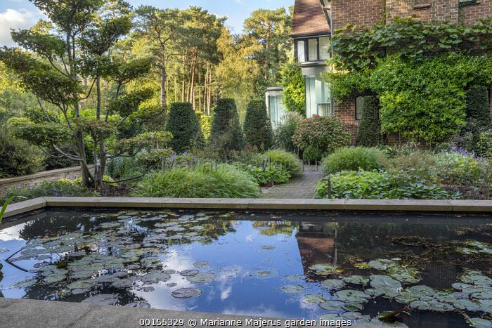 Raised water lily pond, Hakonechloa macra, yew topiary