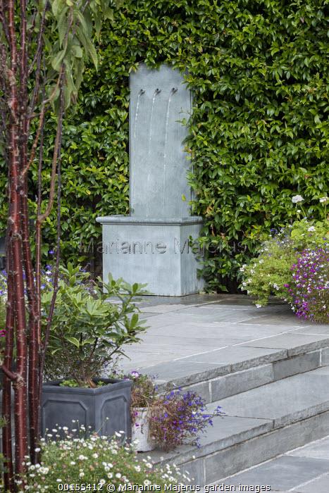 Wall water spout fountain, Trachelospermum jasminoides, stone steps, lobelia in pots, Prunus serrula