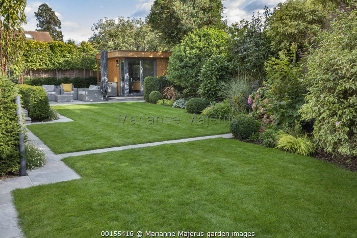 View across lawn with stone mowing strip path edging to Rattan chairs with cushions by garden office, box balls, hydrangea