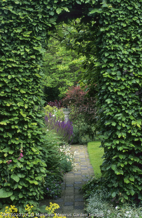 Clipped archway in beech hedge, brick path leading to sundial