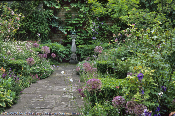 Path leading to sundial, Allium cristophii, clipped Buxus sempervirens